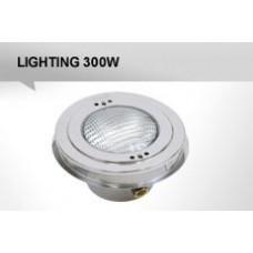 Luminaire for 300W stainless concrete